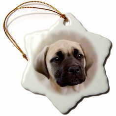3drose Bullmastiff Puppy Snowflake Porcelain Ornament, 3-Inch >>> Once in a lifetime offer : Christmas Ornaments