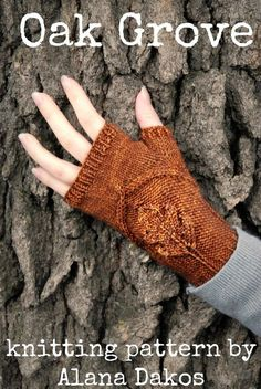 Knitting Pattern for Oak Grove Mitts - Cozy little mitts with a beautiful embossed oak leaf. Instructions are included for both a fingerless glove and fingerless mitten version. Designed by NeverNotKnitting Knit Mittens, Knitted Gloves, Women's Gloves, Half Gloves, Wrist Warmers, Hand Warmers, Lace Knitting Patterns, Leaf Knitting Pattern, Fabric Patterns
