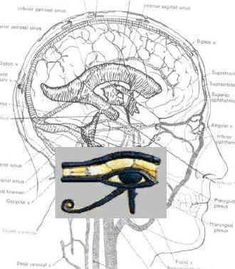 The EYE of ancient Egypt and the Pineal gland #energy