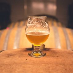 craft beer in glass brewery Savannah, GA Places to Stay Things to Do Tours, Sights, Restaurants, Shops & Bars Diy Kombucha, Ale, Craft Bier, Barris, Stuff To Do, Things To Do, Beer Week, Beer Bucket, Home Brewing Beer