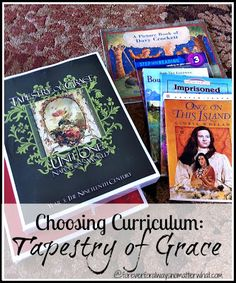 Forever, For Always, No Matter What : Catholic Adoption & Home Education Blog: Choosing Curriculum: Tapestry of Grace