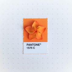 配對一下,生活中的Pantone色票 | ㄇㄞˋ點子靈感創意誌