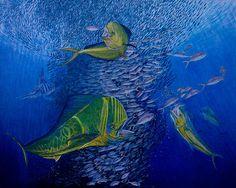Mahi Mahi Original Oil Painting 24x30in by Manuel Lopez