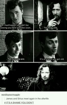 Find images and videos about harry potter, sirius black and james potter on We Heart It - the app to get lost in what you love. James Potter, Saga Harry Potter, Harry Potter Jokes, Harry Potter Universal, Harry Potter World, Scorpius And Rose, No Muggles, Yer A Wizard Harry, Lily Evans