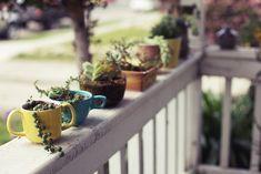 Blumentöpfe sukkulenten kaffeetassen veranda ideen Selbermachen