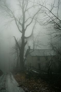 old farmhouse in winter...looks more like a Halloween house