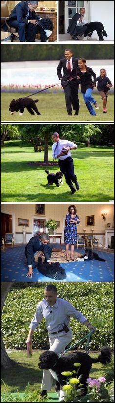 #FAMILYTIME #FUNTIMES #44thPresident #BarackObama & #FirstLady #MichelleObama #FirstDaughters #MaliaObama #SashaObama #FamilyDogs #Bo #Sunny #ObamaFamily #ObamaLegacy #ObamaFoundation #ObamaLibrary #YesWeCan #YesWeDid Obama.org