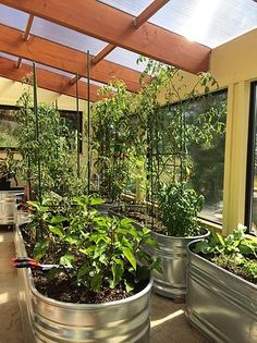 Based in Colorado, Ceres designs and builds passive solar greenhouses for year-round growing | Specializing in aquaponics greenhouses, cold weather greenhouses and net-zero energy greenhouses