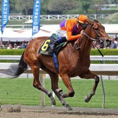 Beholder, the champion 2-year-old filly of 2012, worked seven furlongs in 1:27.80 at Santa Anita on Thursday, her final workout before the Kentucky Oaks at Churchill Downs on May 3.  Trained by Richard Mandella, Beholder was ridden by Garrett Gomez and worked in company with a stablemate, starting a few lengths behind. Beholder ranged on the outside in the stretch and finished in front.