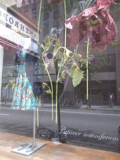 Anthropologie window display, Rockefeller Center, New York City, August 2012