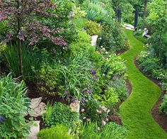 Lawn as path winding through gardens