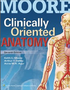 Guyton and hall textbook of medical physiology 13e free ebook clinically oriented anatomy moore pdf free download its night and i decide to write about fandeluxe Images