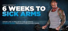 Jim Stoppani's 6 Weeks To Sick Arms