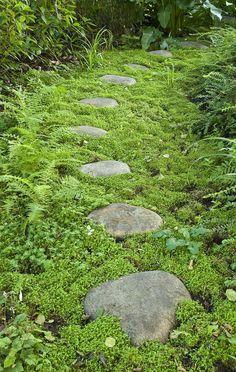 Mossy stone path by Acres Wild Landscape & Garden Design