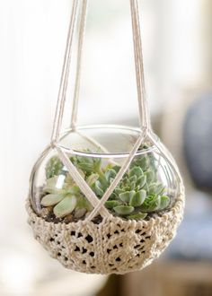 Growing up in the '70s, our house was filled with macramé plant hangers. I  noticed a resurgence of these--even Anthropologie has made their  contribution.  So I decided to combine my new-found love for the succulent terrarium with  the plant hanger. But, I must admit, I was not on board for learning a  new craft.  Hence, the Knitted Terrarium Hanger. I used inexpensive, natural cooking  twine. I don't have an exact yardage, but I probably only used about  one-third of the cone on size…
