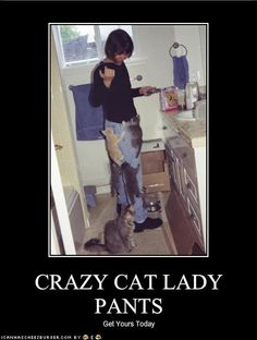 CRAZY CAT LADY PANTS  Get Yours Today