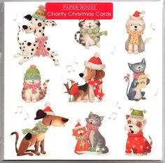 Charity Christmas Cards, Greeting Cards, Packing, Bag Packaging
