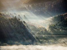 Lichtstrahlen der morgentlichen Sonne scheinen durch die nebelverhangenen Hügel des Pfälzer Waldes.