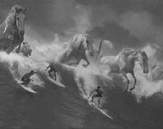 Guinness, Surfer: Allusions to Walter Crane & Herman Melville, an original track by Leftfield, and directed by Jonathan Glazer. Tv Adverts, Tv Ads, Guinness Advert, Jonathan Glazer, White Horses, Horse Pictures, Tv Commercials, Poster On, Metal Signs