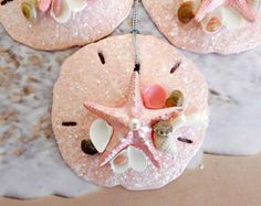 Pink Sand Dollar Ornaments ( Set of 3 ) , Coral Seashells, Starfish Decor, Beach Favors, Coastal Wedding, Mermaid Party, Seaside Decor