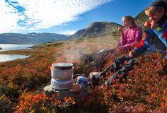 10 fjellturer som passer for barn Barn, Mountains, Nature, Travel, Converted Barn, Naturaleza, Viajes, Barns, Trips