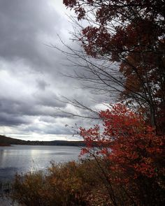 #WonderWatch 2015-145 Brooding Beauty #autumn #SandyLongPhotos #sky #skies #clouds #cloudscape #GloweringSky #GloomyDay #dramatic #metallic #MetallicSky #inspire #beauty #fall #GlimpsesOfFall #nature #naturephotography #Pennsylvania #PA #trees #UpperDelawareRiverRegion #water #lake