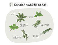 Kitchen Garden by Tamalia Art Studies, My Drawings, Behance, Garden, Illustration, Kitchen, Garten, Cooking, Lawn And Garden