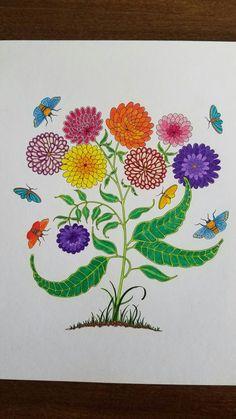 Amazon Secret Garden 20 Postcards 9781856699464 Johanna Basford Books By Jasmine Lim On Apr 23 2015