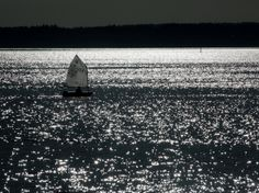 Sunny Seattle sailing near Golden Gardens and Shilshole Bay | The Seattle Times