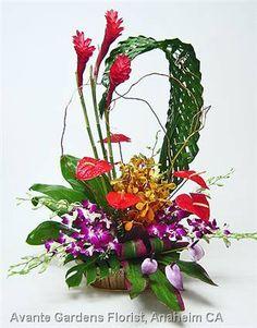 Aloha Tropical Flower Welcome
