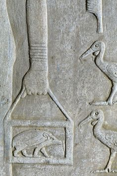 Sacred Animals in Ancient Egypt Egyptian Mythology, Ancient Egyptian Art, Ancient History, Art History, Historical Artifacts, Ancient Artifacts, Aliens And Ufos, Ancient Architecture, Art Plastique