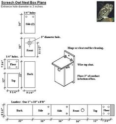 Owl box: Birding blog: Building a Screech Owl Box