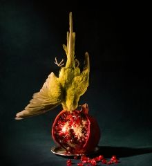 Roberto Greco. Budgie and pomegranate