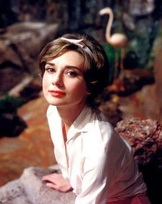 Audrey Hepburn photographed for green mansions