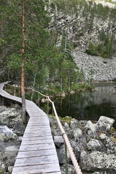 Looking for a Lapland walking day trip? Isokuru route in Pyhä Luosto national park is great! Close to Rovaniemi with amazing scenery! Lapland Finland, Finland Food, Lake Beach, Tourist Places, Outdoor Life, Hiking Trails, Day Trip, Cool Places To Visit, Cool Pictures