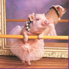 Ballerina PiggeyWiggey!!! :D x