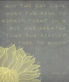 Risk to bloom