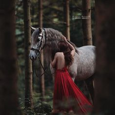 A beautiful red riding hood crossed my path in Switzerland. ♥️ (@fairytale_horse, stunning Christine and her wonderful Altanero) . . . . . #pferdefotografie #huffpostgram #liveunscripted #animalphotography #exploremore #lookslikefilm #createexplore #artofvisuals #horsephotography #horsesofinstagram #agameoftones #lifeofadventure #igmasters #liveauthentic #chasinglight #justgoshoot #animallovers #makemoments #finditliveit #equine #loveanimals #storytelling #visualsoflife
