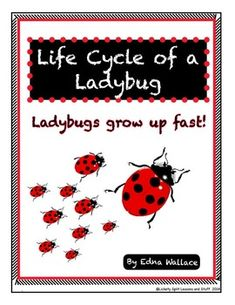 **FREE***Life Cycle of a Ladybug.   Ladybugs are adorable little creatures -- perfect for introducing kids to science exploration.  This unit includes a Life Cycle Poster, a Spin and Learn Activity, a Writing exercise and some LADYBUG facts.   6 Pages  FREE!