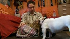 We can all just get along. Bulldog adopts piglets shivering after hunter killed their mom.