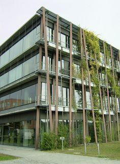 Abb. 1 Physik-Institut der Humboldt-Universität zu Berlin am Standort Adlershof mit Fassaden- und Dachbegrünung zur passiven Gebäudekühlung. Über einen 5-Behälter-Regenspeicher mit einem Gesamtvolumen von 55 m³ wird Regenwasser zur Bewässerung und adiab