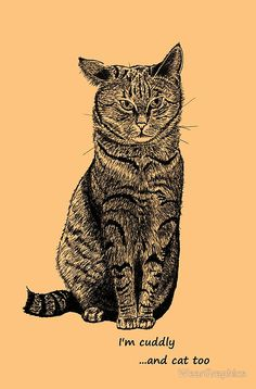 Cat droopy ear, graphic