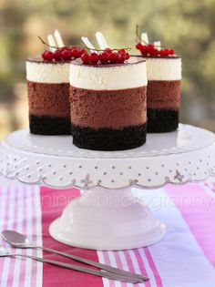 Looks Like the Cook's Illustrated killer Triple Chocolate Mousse Cake recipe Chocolate Mouse Cake, Triple Chocolate Mousse Cake, Chocolate Desserts, Choc Mousse, Mini Cakes, Cupcake Cakes, Cupcakes, Just Desserts, Delicious Desserts