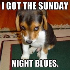 7 ways for teachers to beat the Sunday blues | The Cornerstone