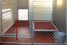 dog kennel designs | Indiana Dog Boarding Services, Dog Kennel Near IN, MI, IL, OH