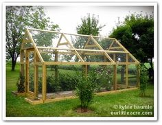 "chicken wire ""greenhouse"" to keep out birds, deer and rabbits Projects X 2: The Berry Barn"