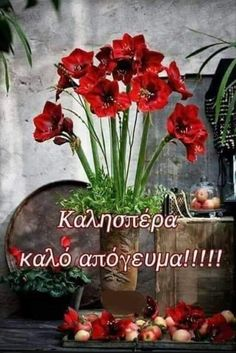 Good Afternoon, Good Morning, Greek Language, Greek Quotes, Greek Sayings, Good Night, Beautiful Pictures, Plants, Cards