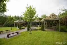Carlton Hotel, Hotel Reviews, Dublin, Trip Advisor, Bloom, Outdoor Structures, Garden, Plants, Pictures