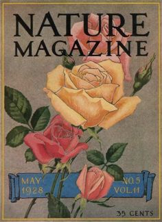 Painted Roses Nature Magazine Cover from May 1928
