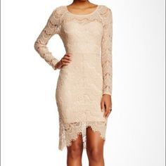 Amazing lace dress Beautiful hi low dress. Look amazing for any occasion. Fits size 12-14. Sioeblu Dresses High Low